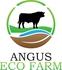 Logo_angusecofarm_315kb_thumb
