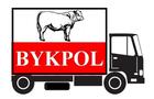 Bykpol_logo_small