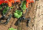 EP maszyna do pielęgnacji i okrywania roślin 2