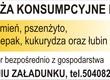 Owies Kupię zboża paszowe: pszenic