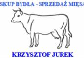 Skup bydła rzeżnego - konkurencyjne ceny !