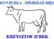 Byki na ubój Skup bydła na terenie województwa