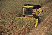 usługi koszenia kukurydzy wlkp