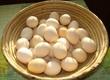 Dom i ogród Oferuję jaja od kur hodowanych