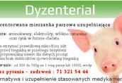 DEZYNTERIAL - chroni przed biegunką