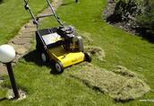 Dom i ogród Wykonamy wiosenną wertykulację trawnika w ogrodzie...