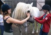 Wakacje, konne, jeździeckie, rekreacyjne, obóz konny -ostatnie wolne