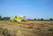 Kombajny do zbioru zbóż, CLAAS DOMINATOR 98 SL kombajn MERCEDES 180KM 3