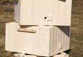 Ule wielkopolskie drewniane 10 ramkowe - nowe 1