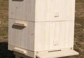 Ule wielkopolskie drewniane 12 ramkowe - nowe