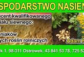 oferta nasienna jesień 2014