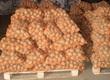 Ziemniaki Sprzedam ziemniaki jadalne Irga