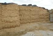 Sprzedam kiszonke z kukurydzy- 2.000 ton, cena 200 tys. zł.