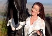 Konie fryzyjskie 2 rasowy ogier klacz, a teraz dostępny