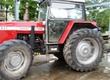 Messey Ferguson sprzedam ciągnik Rolniczy Massey