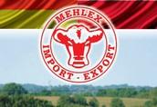 Jałówki i krowy z Danii i Niemiec - bezpośrednio