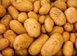 Ziemniaki Oferuje ziemniaki jadalne Wineta