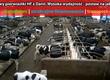 Krowy Piękne krowy pierwiastki HF z Danii
