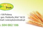 Owies Kupię zboża paszowe i konsumpcyjne: pszenicę, pszen...
