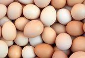jaja jajka bez cholesterolu od kury zielononóżki kuropatwianej