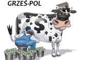 Skup bydła GRZEŚ-POL
