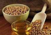 Sprzedajemy olej sojowy nierafinowany