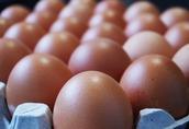 PILNIE sprzedam małe świeże jaja z wolnego wybiegu (1PL).