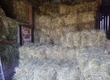 Siano Sprzedam ładne suche siano tegoroczne