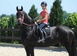 Konie Sonia jest gotowa udać się do odpowiedniego