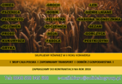 Skup zbóż ekologicznych.