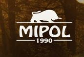 SKUP Bydła FHU Mipol