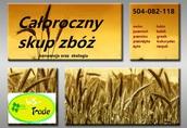 Rzepak Kupię zboża ekologiczne i konwencjonalne: żyto...