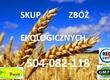 Żyto Kupię zboża ekologiczne: żyto