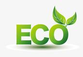 Kupię żyto ekologiczne