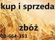 Dodatki paszowe Sprzedam śrutę sojową, słonecznikow