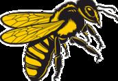 Odkłady pszczele 3-5 ramkowe, ramka wielkopolska