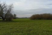 Grunt w gminie Drezdenko