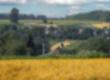 Gospodarstwa rolne Ukraina. Stada krow, owiec, koz