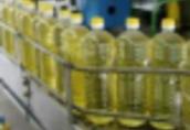 Słonecznik Ukraina. Tluszcze, oleje roslinne od 2, 2 zl/L. Produkujemy...