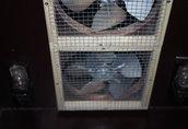 wylęgarka inkubator 6