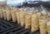 Ukraina. Wegiel drzewny 930 zl/tona, brykiety 240 zl/tona, carbon