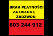 Byki rozpłodowe Proszę o kontakt osoby poszkodowane (brak płatno...